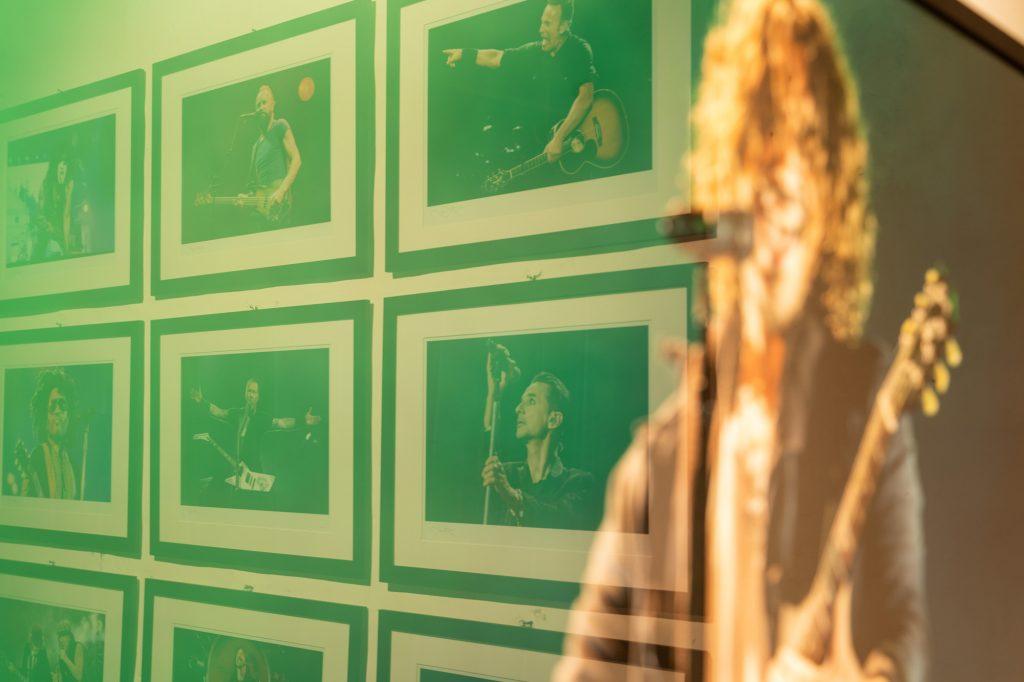 Rock N Roll Bonsai   Gianluca David photographer and videomaker